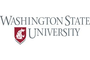 Client_University_Washington State